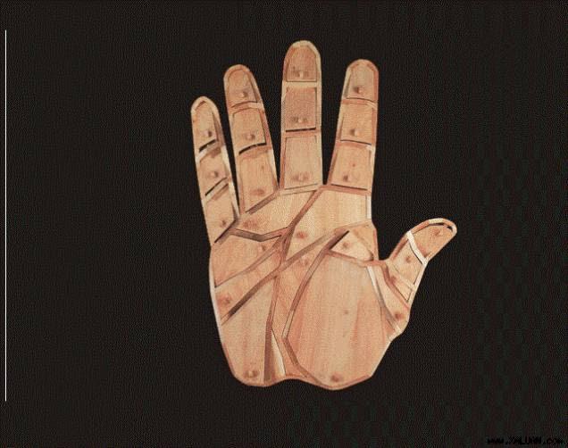 Tham khảo vui về tướng các ngón tay
