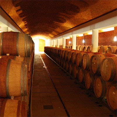 Anthonij Rupert cellar