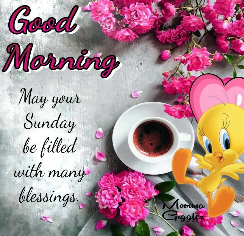 Sunday Fill With Many Blessings Good Morning Sunday Pictures