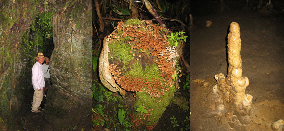 Caves in the Amazon region