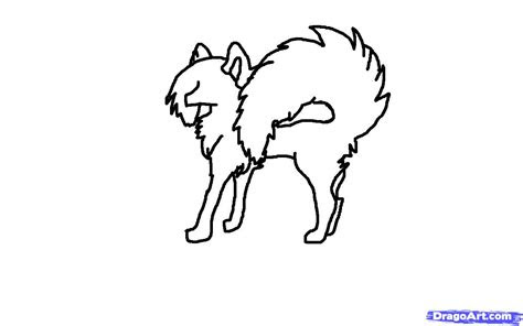 anime wolf drawing tutorial step  step drawing sheets