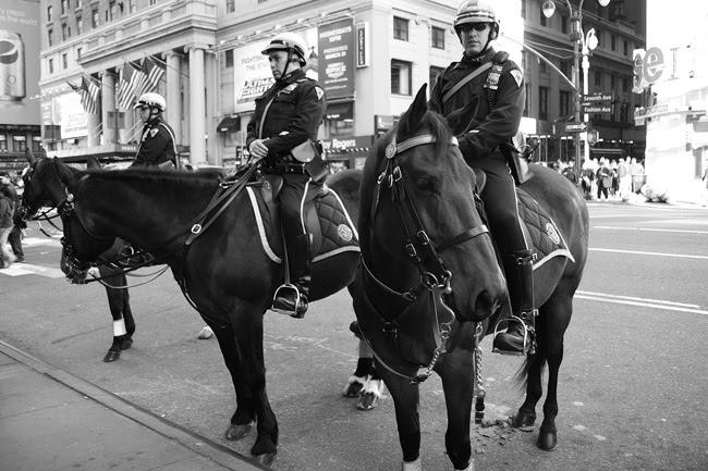 NYPD Horse patrol