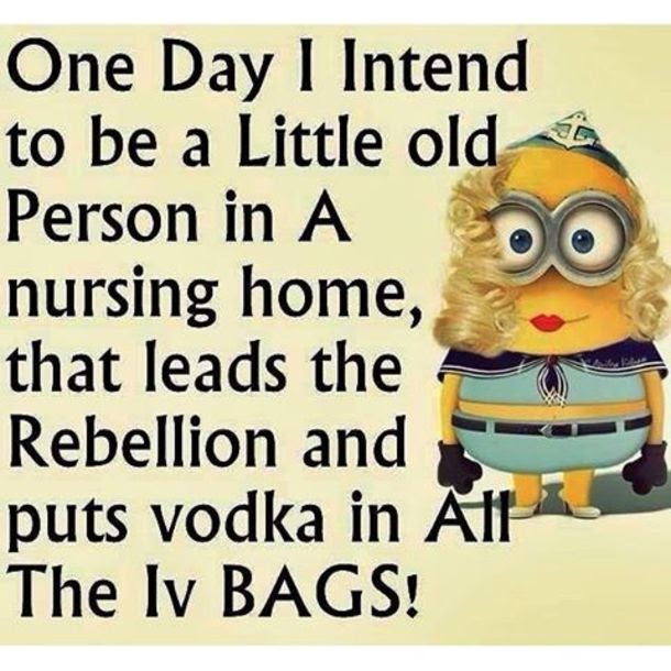 One Day Funny Minion Quote Pictures Photos And Images For Facebook