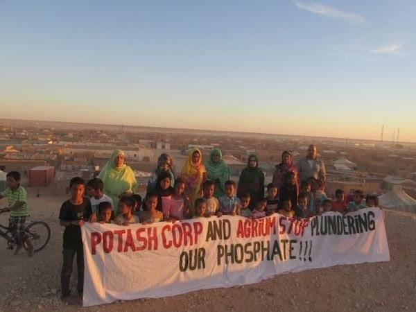 """Nueva Zelanda es el único país en el mundo que compra """"fosfato de sangre saharaui"""" a Marruecos"""