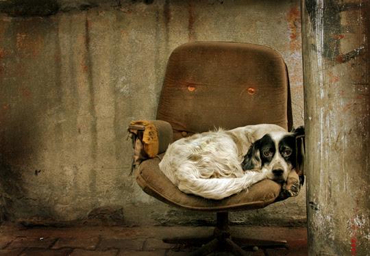the Broken Chair by Can Berkol