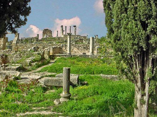 2259-VOLUBILIS-Ruines-romaines.jpg