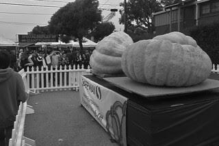 HMB Pumpkin Fest - Giant Pumpkins