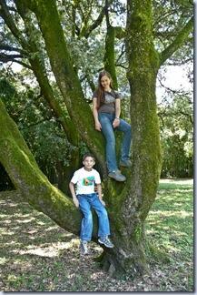 76 Simon in Sonja na drevesu