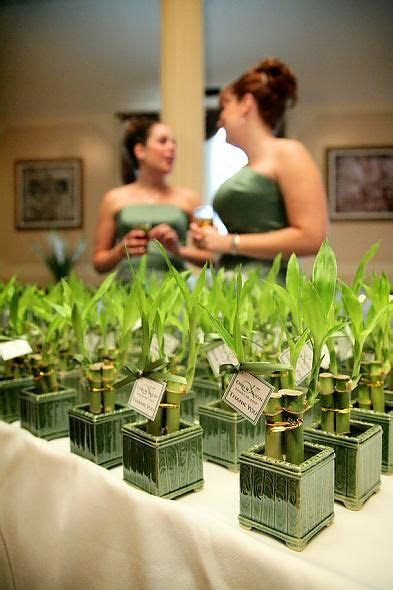 Bamboo favors, could double as centerpieces   Bamboo