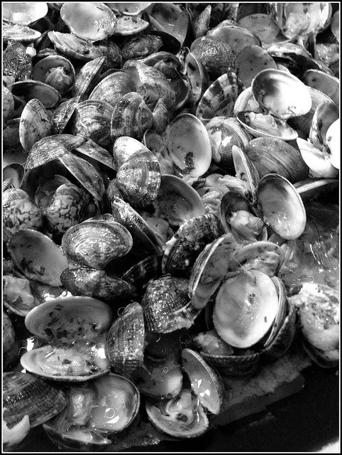 clams party