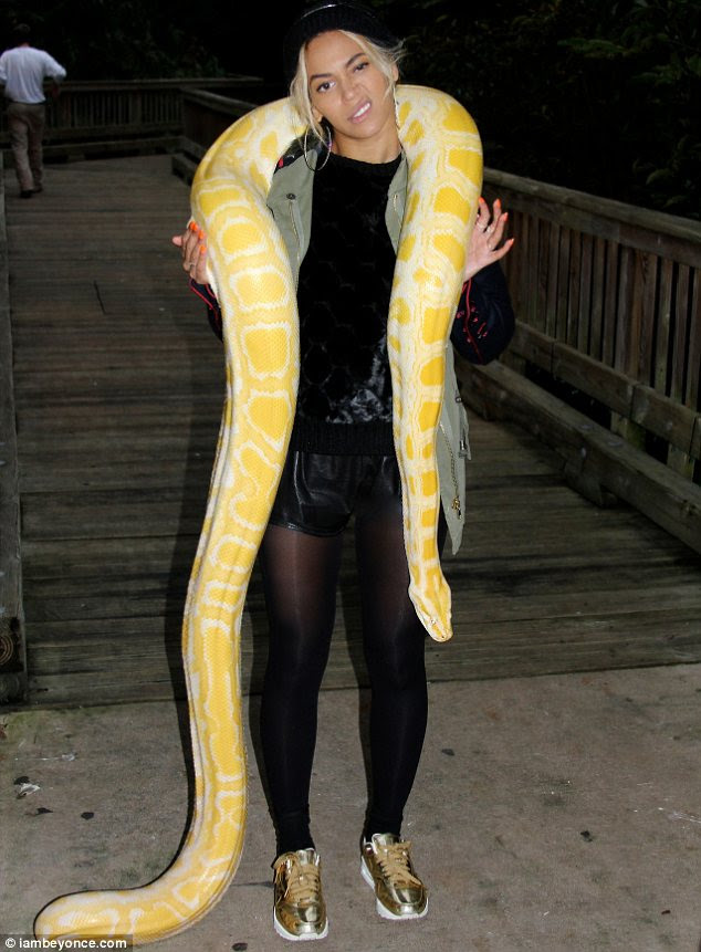 Wild child: Beyonce showed her brave side as she posed with a huge snake