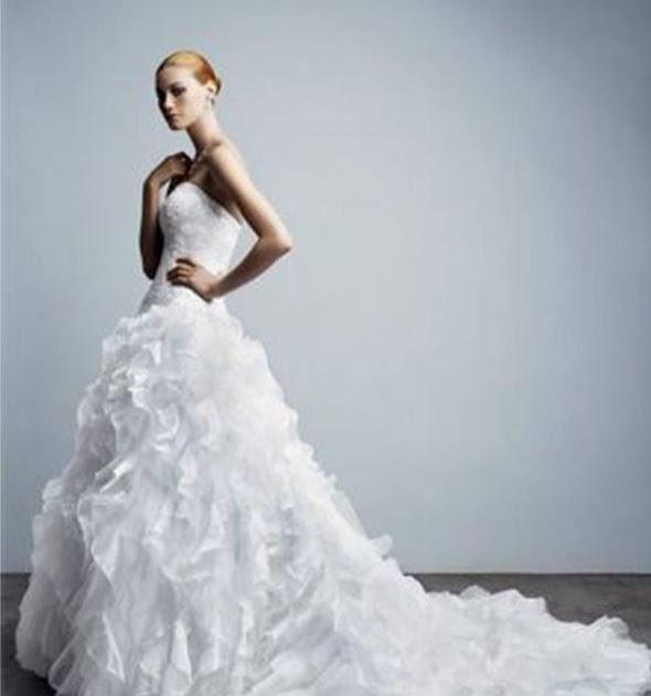 Davids bridal pictur of wedding dresses bridaldresses for Wedding dresses for 99