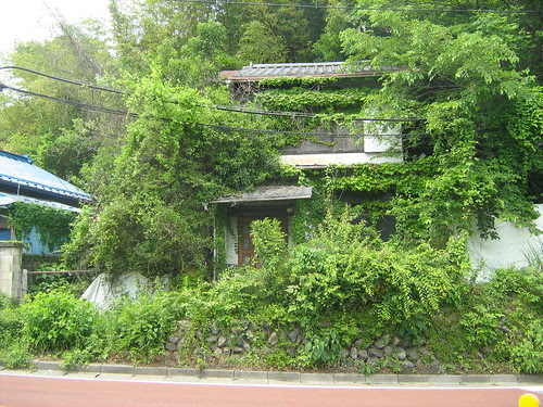 Old abandoned house in Sagamiko