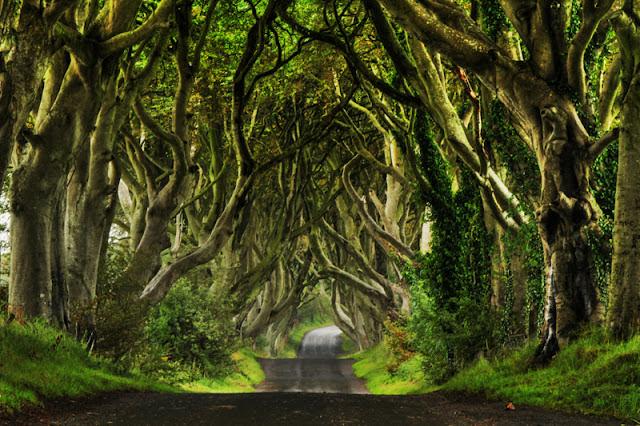 Setiap keajaiban alam ialah unik dengan caranya sendiri Jalan Indah yang Kaprikornus Lokasi Suting Game of Thrones