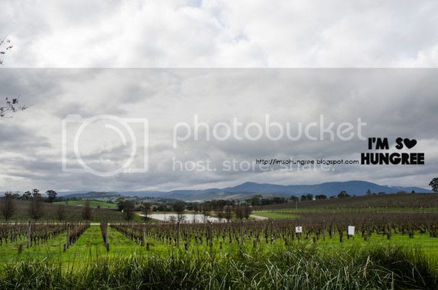 photo wine-compass-yarra-valley-8397_zpsrljsn4qn.jpg