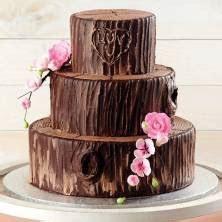 Wedding and Special Occasion Cakes : Publix.com