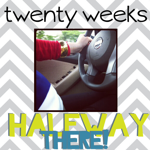 20-weeks