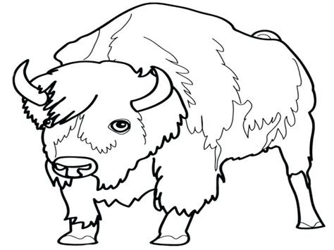 grassland animals coloring pages  getcoloringscom