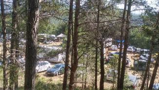 """Desenes de cotxes aparcats en un camp de Querol, a l'Alt Camp, pels assistents a una festa """"rave"""" il·legal (ACN)"""