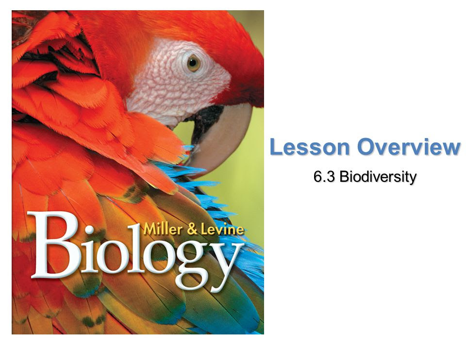 6 3 Biodiversity Worksheet Answers - Worksheet List