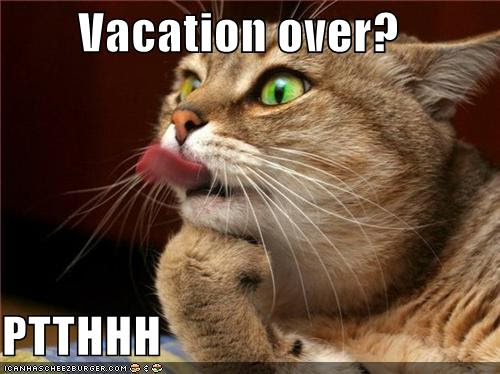Quick Post! You Know That Vacation Is Over When… | Chasing ...