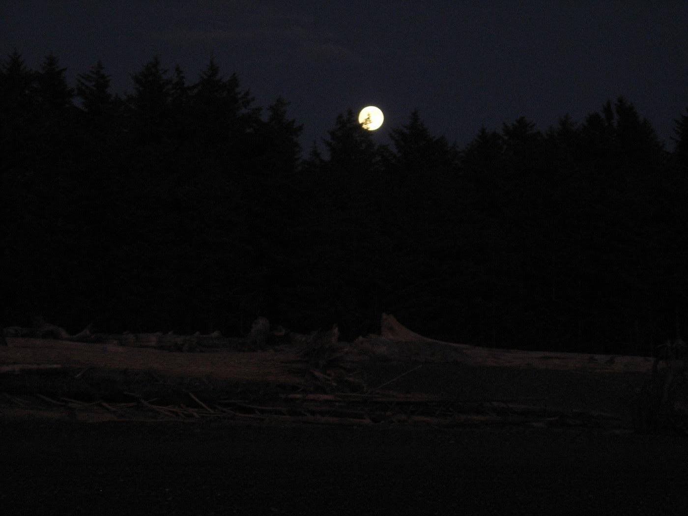 Ночь и Луна в Ля Пуше