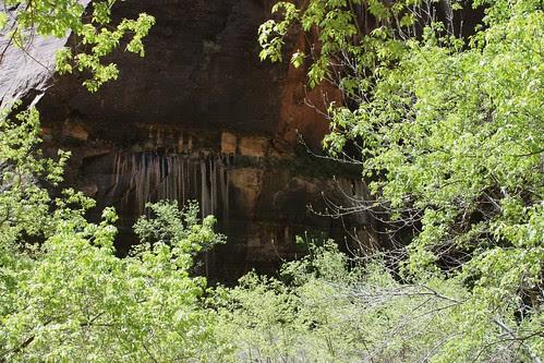 Canyon Walls 01
