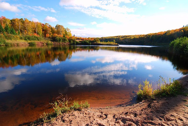 A lake with fall reflections.