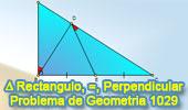 Problema de Geometría 1029 (English ESL): Triangulo Rectángulo, Punto Medio, Angulo, Congruencia, Perpendicular