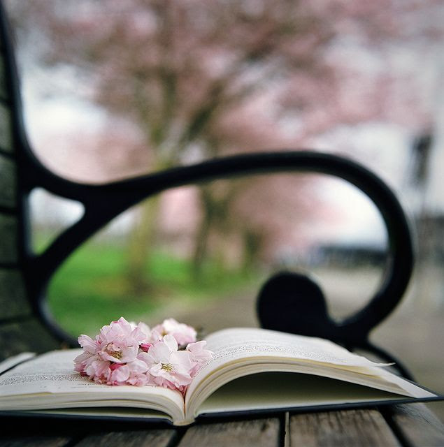 ❥ bench in the park- Ana Rosa Tumblr