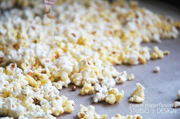popcorn2342