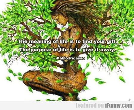 The Meaning Of Life Is To Find Your Gift...