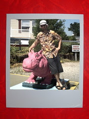 Mr Modtomic and Pink Hippo