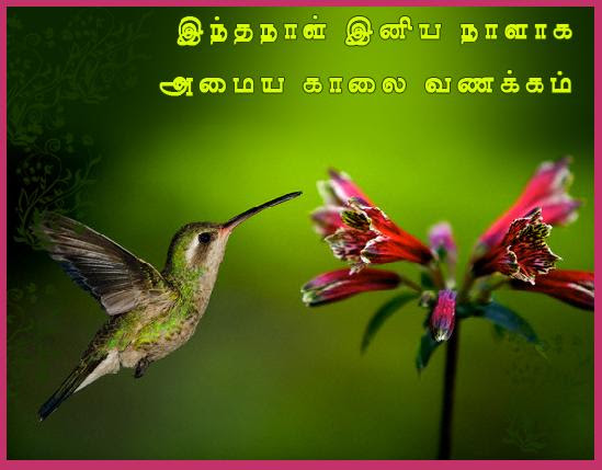 Good Morning Ecard In Tamil Post Card From 365greetingscom