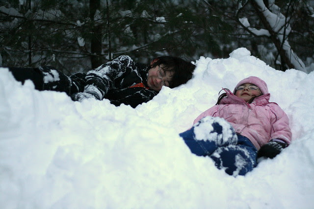 Snow beds