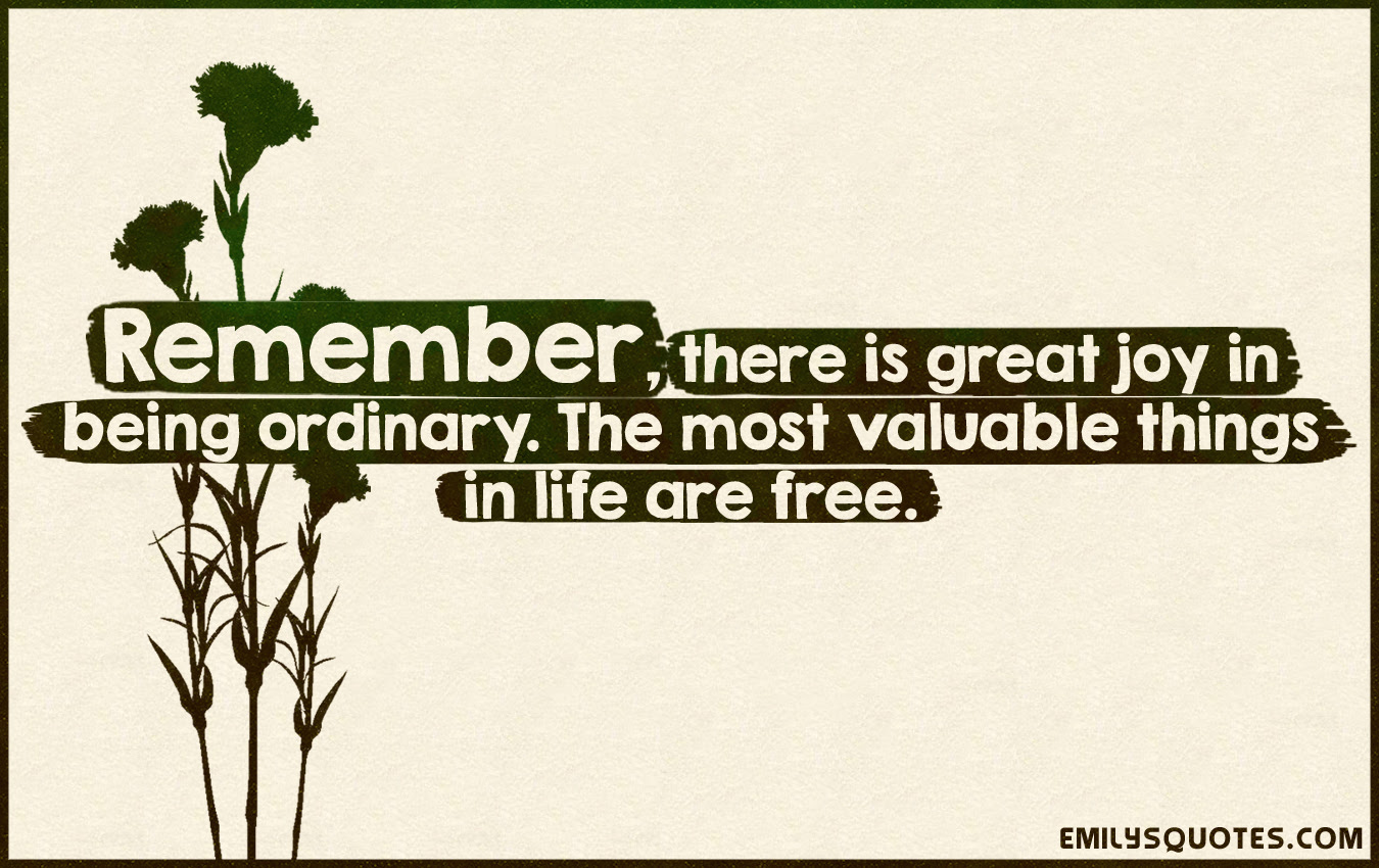Remember There Is Great Joy In Being Ordinary The Most Valuable