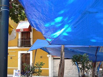 toile bleue et mur jaune.jpg