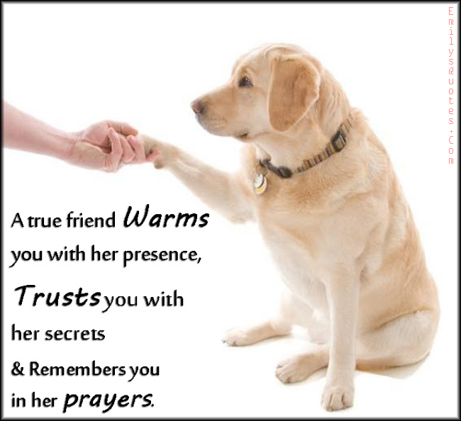 A True Friend Warms You With Her Presence Trusts You With Her