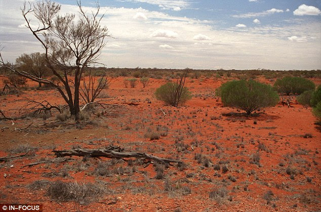 Outback attack: The scene near Ti Tree in the Northern Territory near to Alice Springs, Australia, where Mr Falconio and Ms Lees were ambushed by a violent gunman