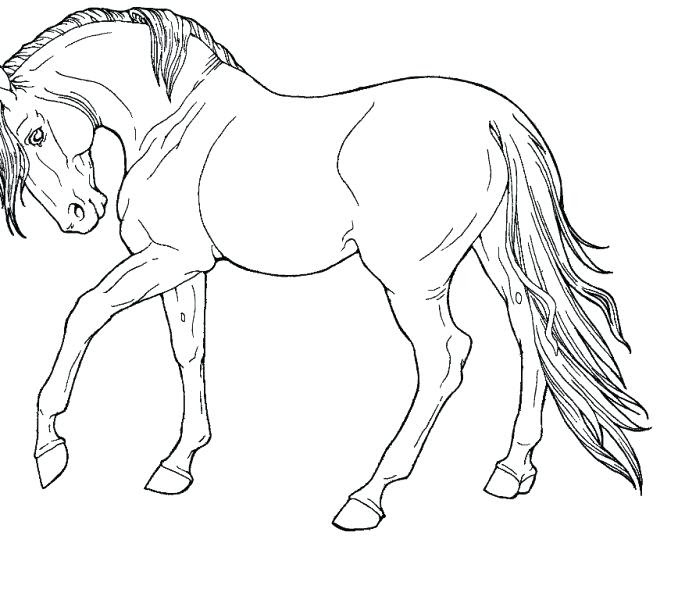 Galloping Horse Coloring Pages at GetColorings.com | Free ...