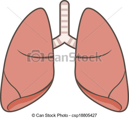 human lung clipart 12