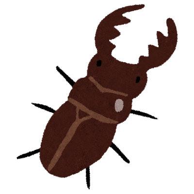 フリー素材 大きなハサミのオスクワガタを描いたイラスト昆虫採集や