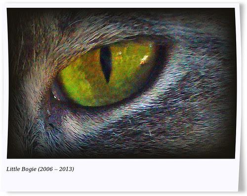 Bogie by Len McAlpine