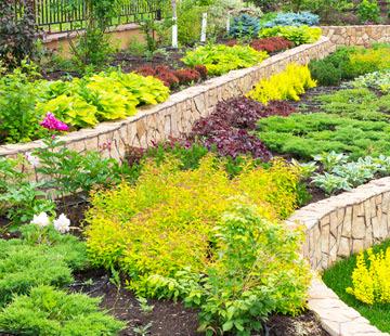Brentwood Landscaping Landscape Design Brentwood Ca Lawn