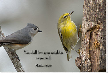 You Shall Love Your Neighbor As Yourself Birds Quote