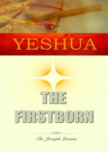 Yeshua the Firstborn