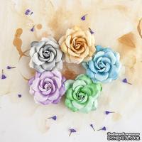 Набор цветов Prima - Del Mar Collection - Thoroughbred - ScrapUA.com