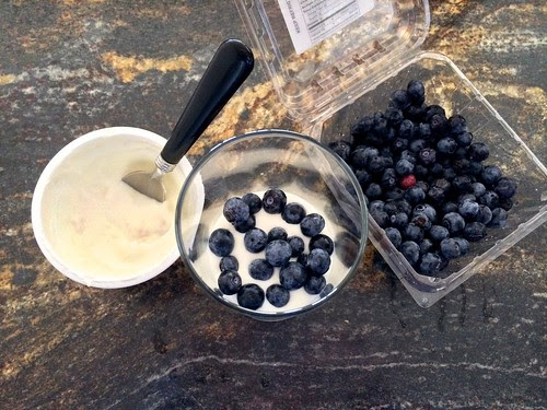 Layer of Greek Yogurt and Blueberries