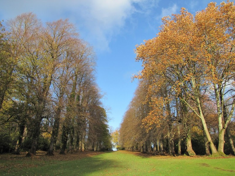Beautiful Walking Trails And Hikes To Take Around Glasgow