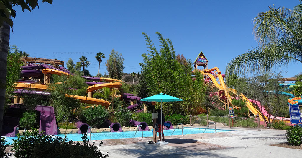 Get Your Splash On At Aquatica San Diego Grown Ups Magazine
